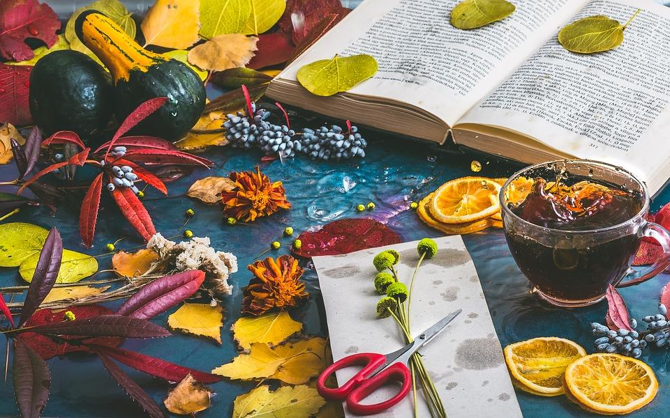 livre_et_feuilles_d'automne_2.jpg